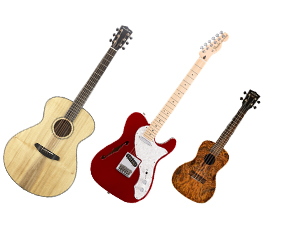 Guitars and Fretted Strings